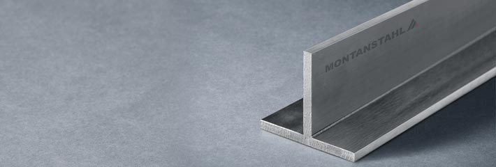 high-end polished stainless steel T-sections